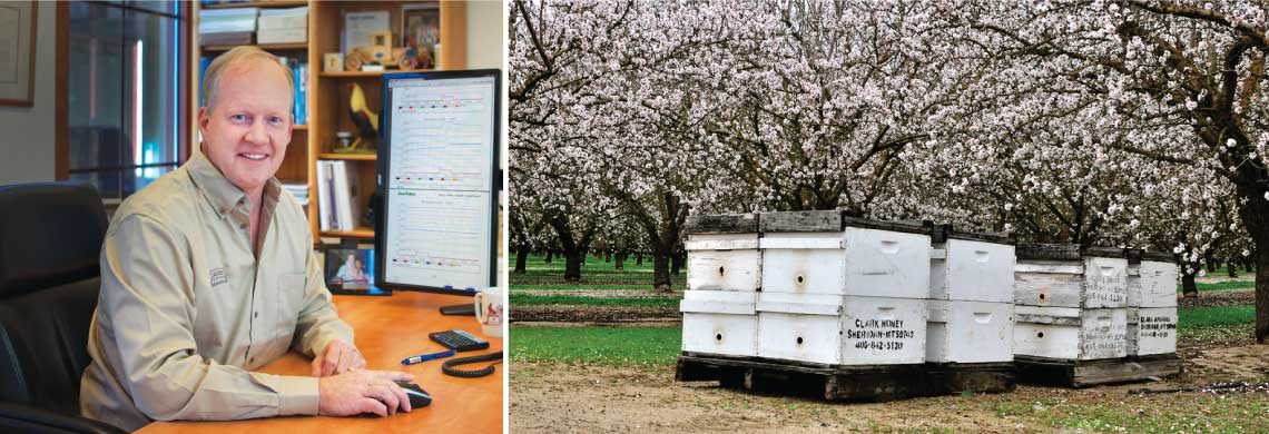 Grower in his office, bee hives in orchard