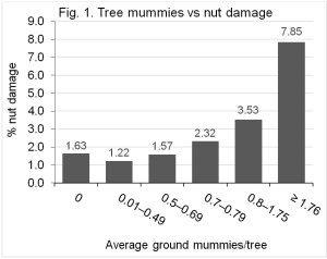 ModifiedHigbee_Siegel_TreeMummies-300x238