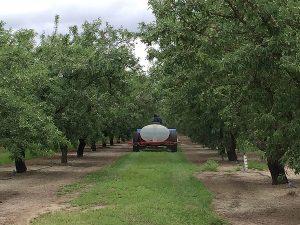 Liquid Fertilizer Application – Turlock, CA